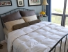 Premium Sliver Antimicrobial White Goose Down Comforter