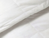 Premium Sliver Antimicrobial White Goose Down Comforter  (2)