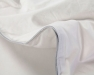 Premium Sliver Antimicrobial White Goose Down Comforter  (3)