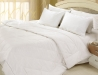 All Season Silver Antimicrobial White Down Comforter (2)