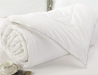 All Season Silver Antimicrobial White Down Comforter (4)