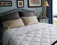 All-Season Silver Antimicrobial White Goose Down Alternative Comforter, Super soft. Light weight