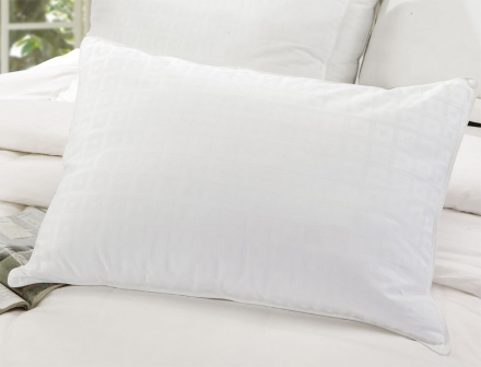 Luxury Aloe Vera Down Alternative Pillow